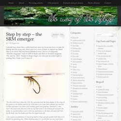 Step by step – the SRM emerger
