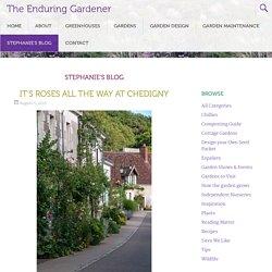 The Enduring Gardener - Part 2