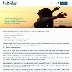 Aura And Chakra Healing