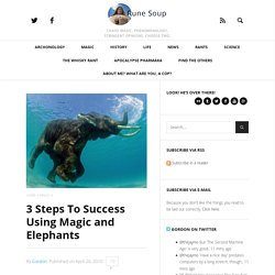 3 Steps To Success Using Magic and Elephants