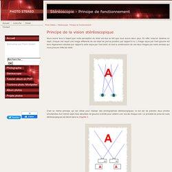 Stéréoscopie: principe de la vision stéréoscopique, perception du relief