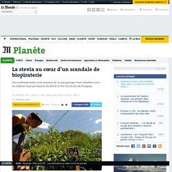 La stevia au cœur d'un scandale de biopiraterie