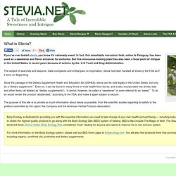 Stevia Sugar Substitute | Body Ecology