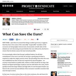 What Can Save the Euro?