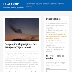 Coopération stigmergique (1/2): des exemples d'organisations