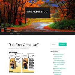 """Still Two Americas"" – breakingbIog"