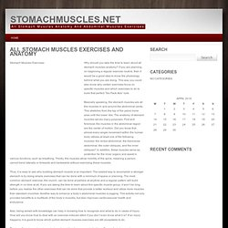 All Stomach Muscles Anatomy And Abdominal Muscles Exercises