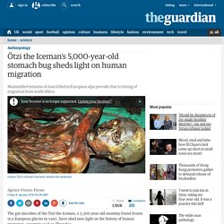 Ötzi the Iceman's 5,000-year-old stomach bug sheds light on human migration