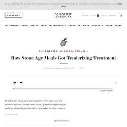 Raw Stone Age Meals Got Tenderizing Treatment