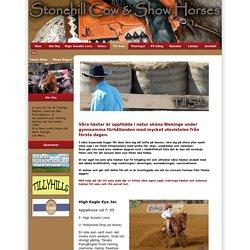 Stonehill Cow & Show Horses - Till Salu