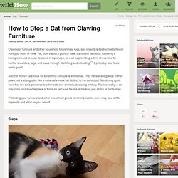 How to Stop a Cat from Clawing Furniture: 11 Steps