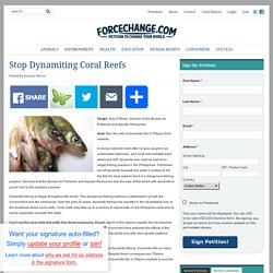 Stop Dynamiting Coral Reefs