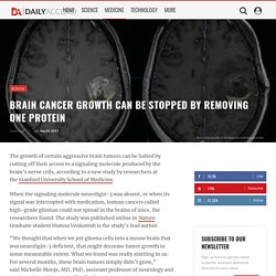 Brain cancer growth can be stopped by removing one protein