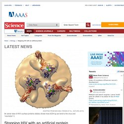 Stopping HIV with an artificial protein