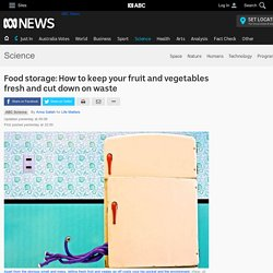Food storage: How to keep your fruit and vegetables fresh and cut down on waste - Science News - ABC News