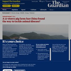 A 12-storey pig farm: has China found the way to tackle animal disease?