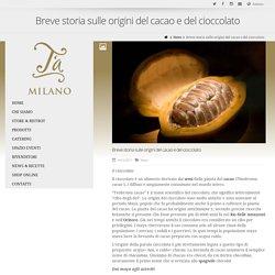 Breve storia sulle origini del cacao e del cioccolato