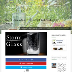 How To Make A Storm Glass That Will Predict The Weather…