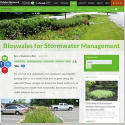 Bioswales for Stormwater Management