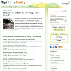 Stormwater Solutions: Curbing Toxic Runoff