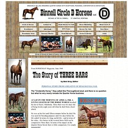 The Story of Three Bars by Bob Gray - Circle D Horses