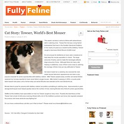 Cat Story: Towser, World's Best Mouser