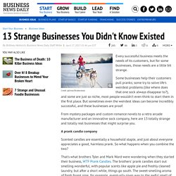 Polemical businesses : 13 Strange Businesses You Didn't Know Existed