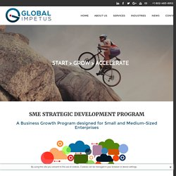SME Strategic Development Program - GLOBAL IMPETUS