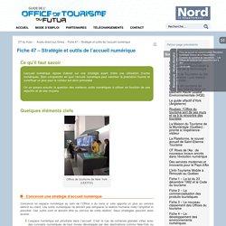 Fiche 47 – Stratégie et outils de l'accueil numérique