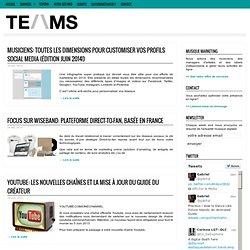Conseils aux artistes Stratégie Web Marketing pour les artistes musiciens, managers, labels – TEAMS