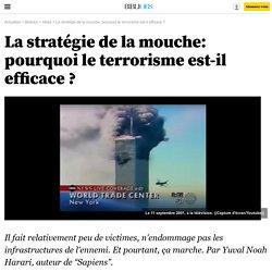 La stratégie de la mouche: pourquoi le terrorisme est-il efficace ? - Bibliobs
