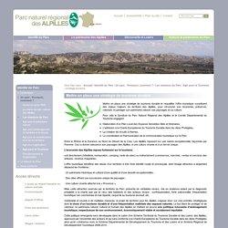 stratégie tourisme / Agir pour le Tourisme / Les missions du Parc / Un parc : Pourquoi, comment ? / Identité du Parc - Site du parc naturel des Alpilles