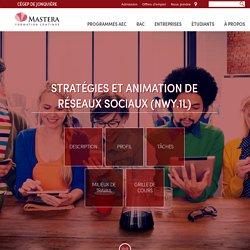 Stratégies et animation de réseaux sociaux (NWY.1L)