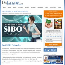 14 Strategies to Beat SIBO Naturally