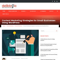 Content Marketing Strategies for Small Businesses Using WordPress - Deliblogic