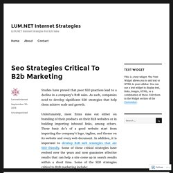 Seo Strategies Critical To B2b Marketing – LUM.NET Internet Strategies