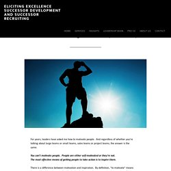 Eliciting Excellence Successor Development and Successor Recruiting