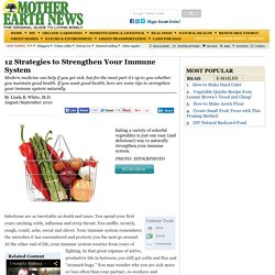 12 Strategies to Strengthen Your Immune System - Natural Health