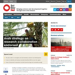 Arab strategy on research collaboration endorsed