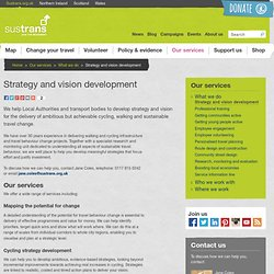Strategy and vision development