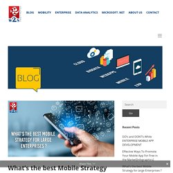 Best Mobile Strategy for large Enterprises