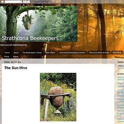 Strathcona Beekeepers: The Sun Hive