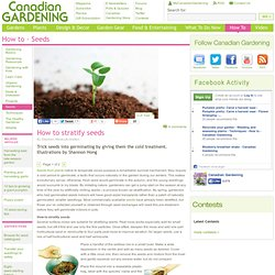 How to stratify seeds - How to stratify seeds - Seeds - How to