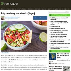 Spicy strawberry avocado salsa [Vegan]
