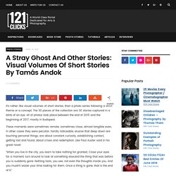 A Stray Ghost And Other Stories: Visual Volumes Of Short Stories By Tamás Andok