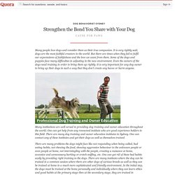 Strengthen the Bond You Share with Your Dog - Dog Behaviorist Sydney - Quora