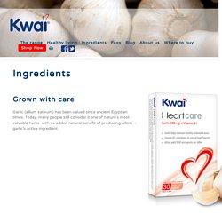 Kwai Garlic Tablets