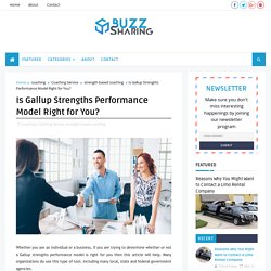 Is Gallup Strengths Performance Model Right for You? - Buzz Sharing