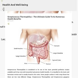 Streptococcus Thermophilus – The Ultimate Guide To Its Numerous Health Benefits