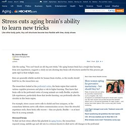 Stress cuts aging brain's ability to learn new tricks